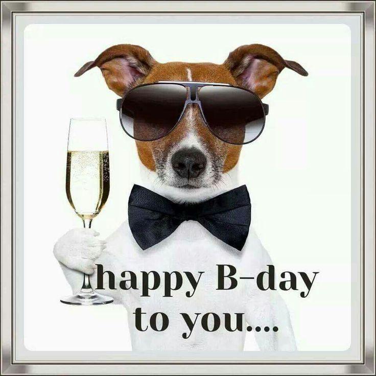 Happy Birthday Images With Jack Russell Verjaardag Mannen Hond