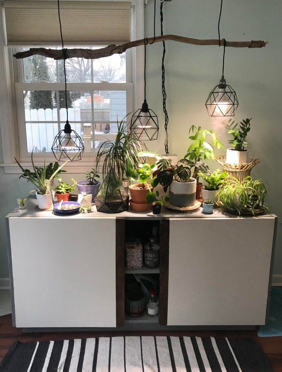Added A Grow Light Fixture While I Was Snowed In Today Houseplants House Plants Indoor Indoor Grow Lights Indoor Plant Lights