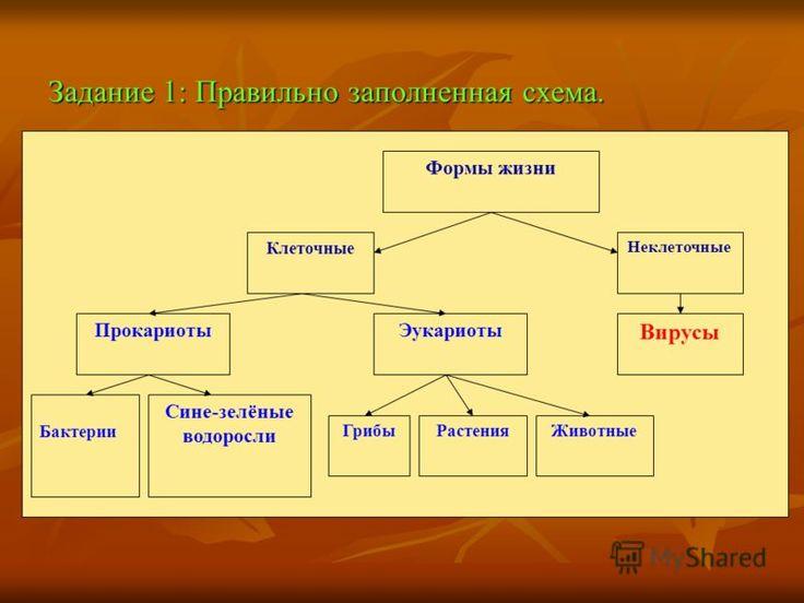 Домашние задание по геометрии 7 класс г.п.бевз в.г.бевз н.г.владимирова