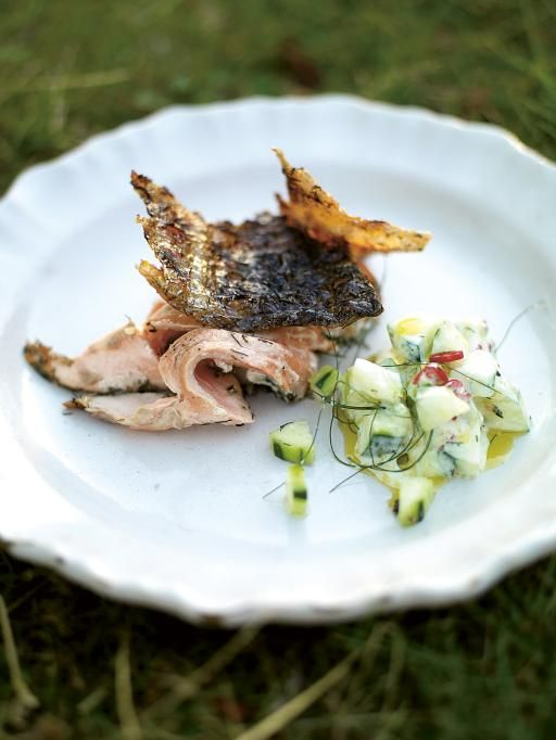 Crispy barbecued side of salmon with cucumber yoghurt Sprinkled with fresh chilli and fennel tops