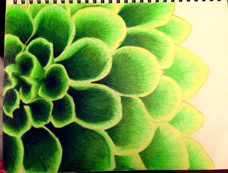 Green flower drawing
