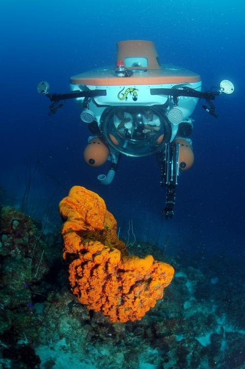 On the Caribbean island of Curaçao anyone can now discover the sea at a depth of 1.000 feet (320meters).
