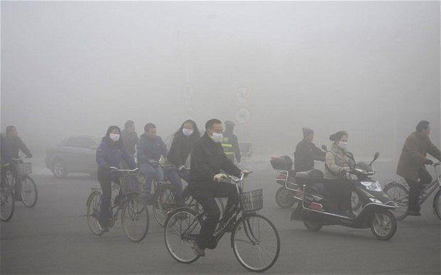 Çevre Kirliliği Konusunda Artık Ciddi Şekilde Kaygılanmaya Başlamamız İçin 20 Sebep