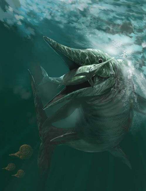 1212 best prehistoric creatures images on Pinterest ...