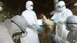 The H5N1 bird flu virus could change into a form able to spread rapidly between humans, scientists have warned.