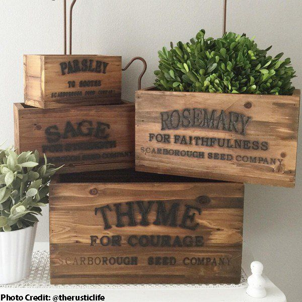 Our Herb Box Set will make THE PERFECT Indoor Herb Garden in a window sill. For GREAT deals on Herb Planter Box set visit Decor Steals