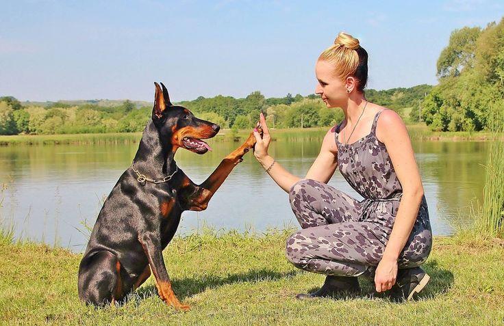 Training tips: Dej pac (VIDEO)