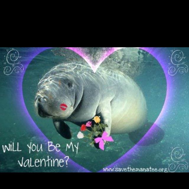 My kinda valentine: Kinda Valentines
