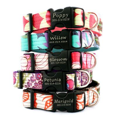 Lazer Engraved Personalized Laminated Cotton Dog Collar - 5 styles