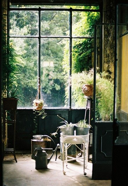 dark corners and dappled light, greenery, rusted metal