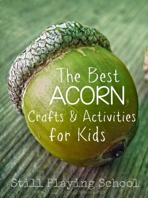 The Best Acorn Crafts, Activities, and Snacks for Kids from Still Playing School