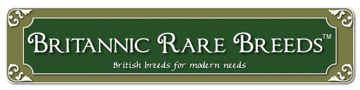 British version of American Livestock Breed Conservancy