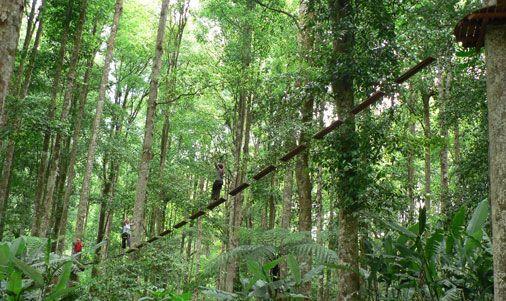 Having fun at Bali Botanical Park