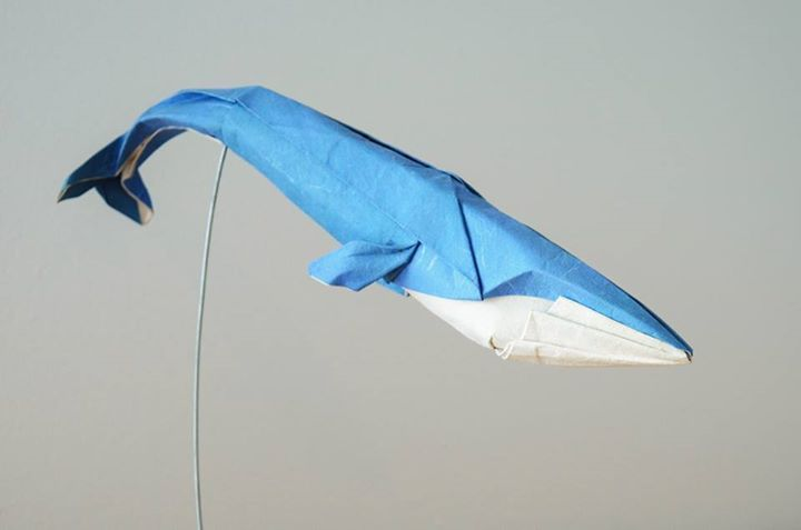 Elegant origami whale created by the talented H.T. Quyet
