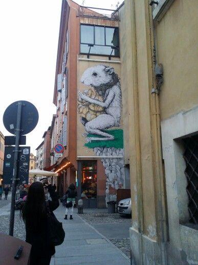 Modena-italy