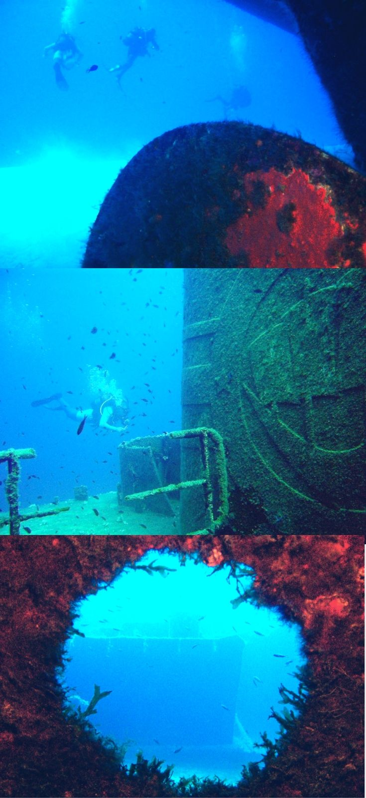 Scuba Diving UM El Faroud shipwreck near blue grotto - Malta: wreck diving paradise in South Europe - World Adventure Divers - Read more on https://worldadventuredivers.com/2016/09/05/malta-wreck-diving-mediterranean-sea/