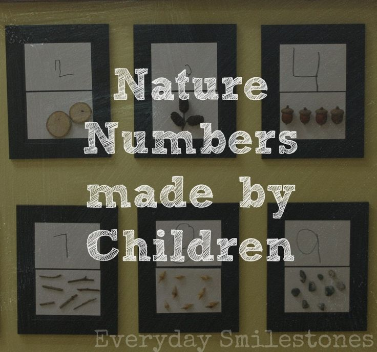Nature numbers made by children in a Reggio inspired classroom