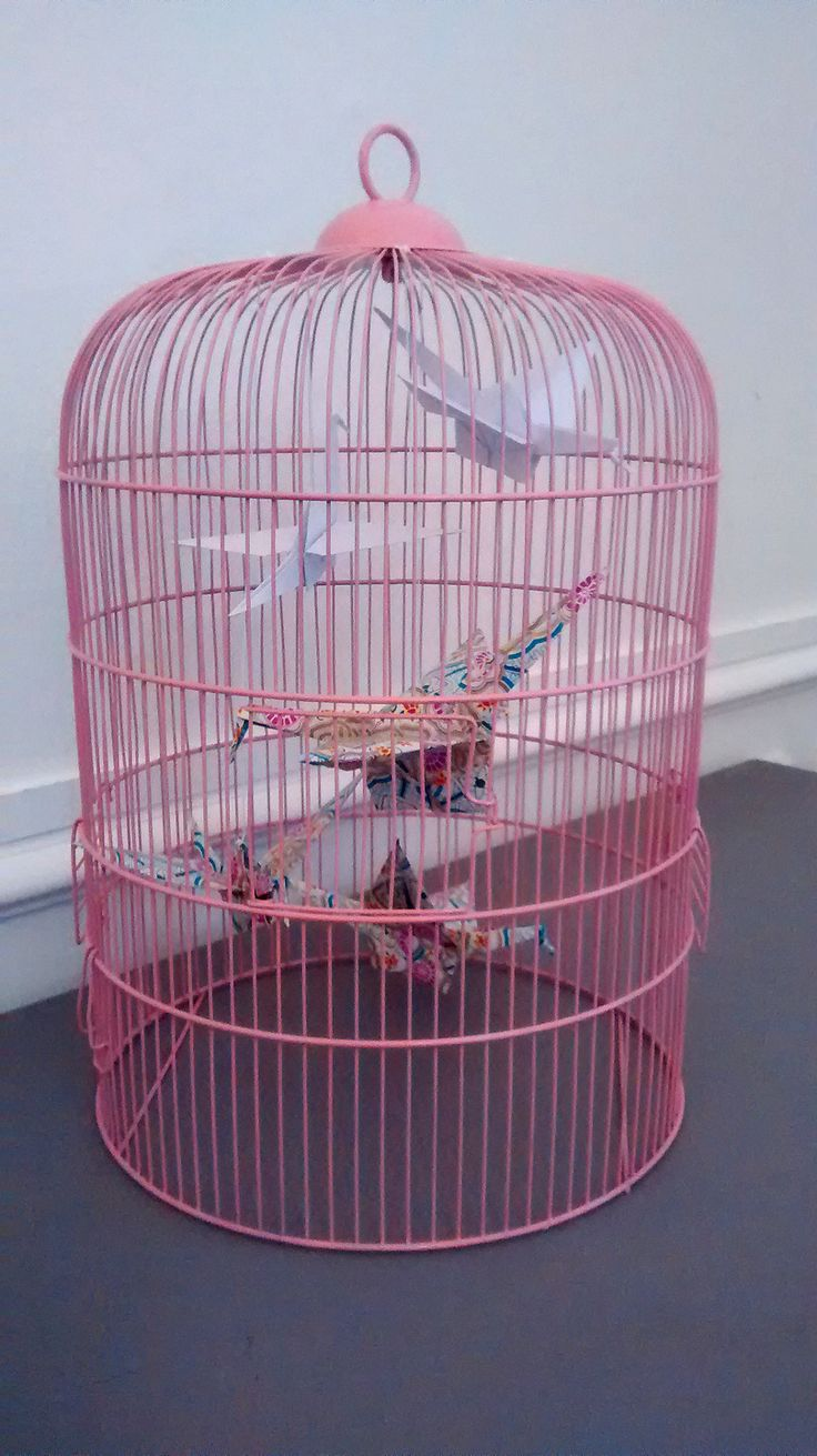 Les 25 meilleures id es de la cat gorie d coration de cage for Petite cage a oiseaux decorative
