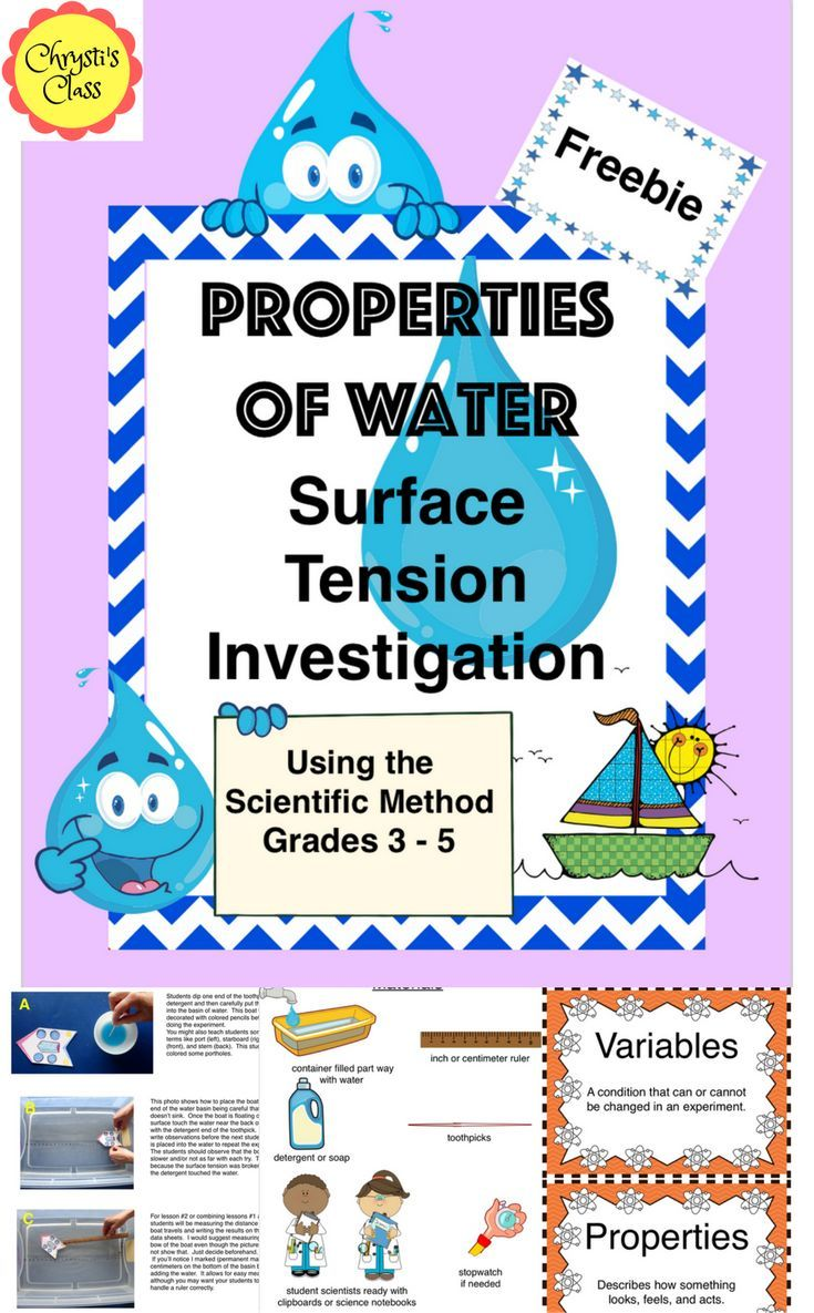 Properties of Water:  Surface Tension Investigation Freebie.  Your kids will love this hands on experiment and learn about the Scientific Method at the same time.  #ScienceInvestigationsfor Kids    #ElementaryScienceExperiments