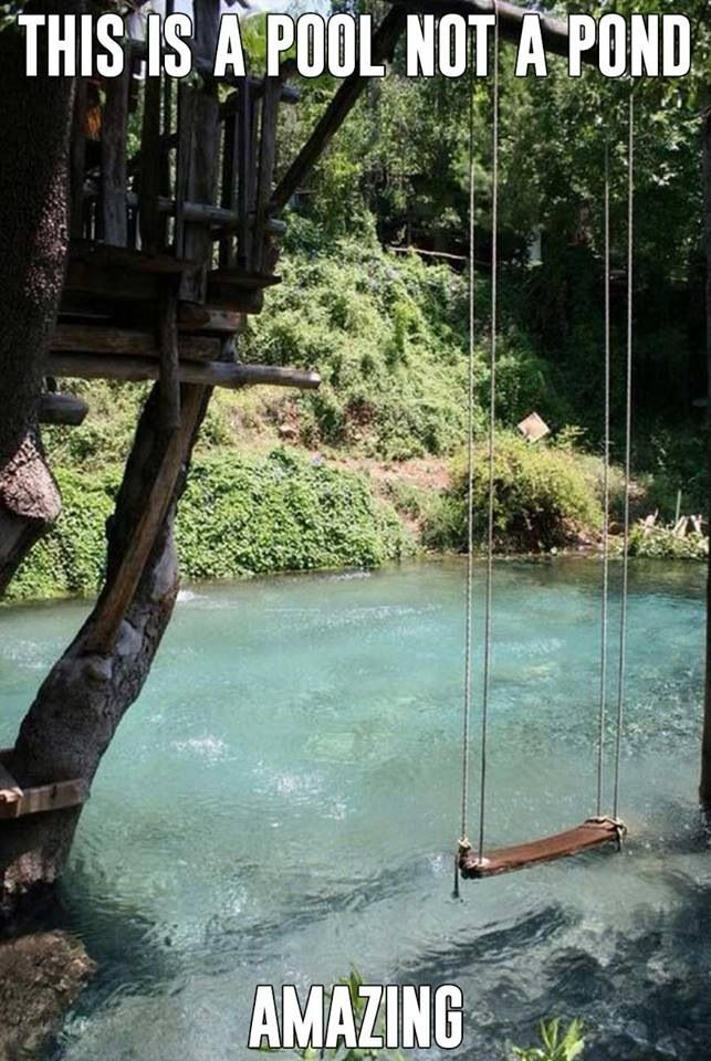 "#ropeswing built in ""pond look"" for the backyard"