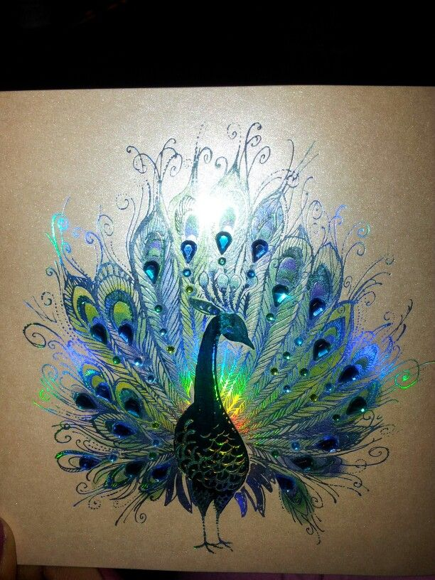 Abstract Peacock Sketch