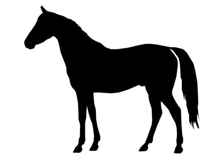 Horse Silhouette - 14 Wall Decal | Wallmonkeys
