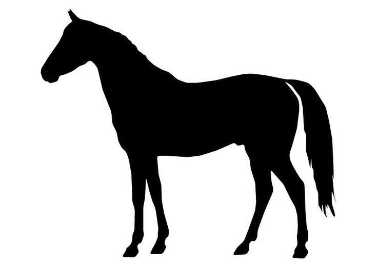 Horse Silhouette - 14 Wall Decal | Wallmonkeys