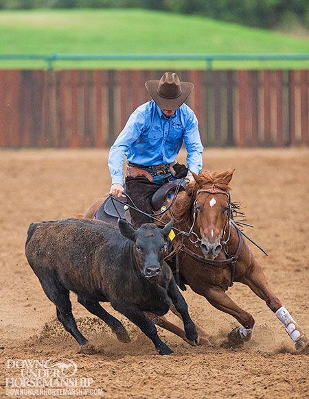 Downunder Horsemanship | Training Tip: Don't Let Fear Hold You Back