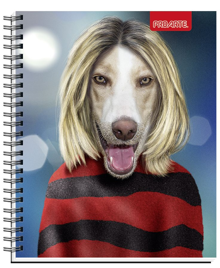 Notebooks Proarte license Pets Rock 2014. This line of notebooks is known Artists, singers and actors that happen to become pets. They are very funny. Meet Pets Rocks in all the best bookstores in Chile and Wallmart and Jumbo Supermarkets. #Pets #Rock #PetsRock #PROARTE #2014
