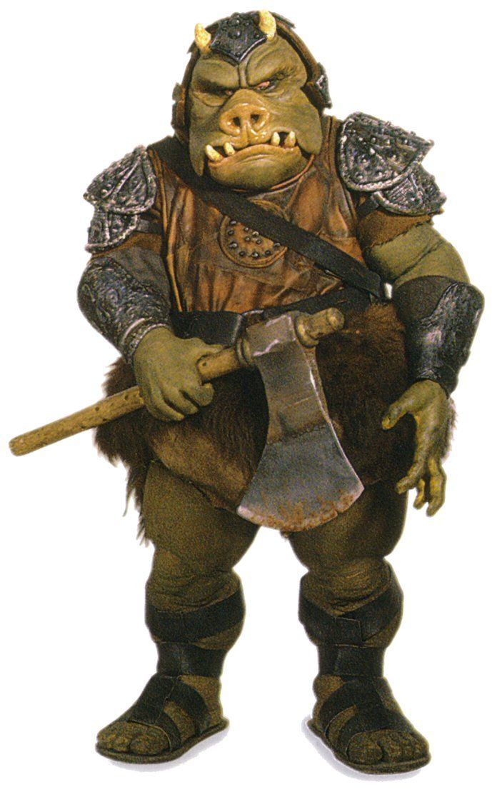 Everything you ever wanted to know about a Gamorrean Guard