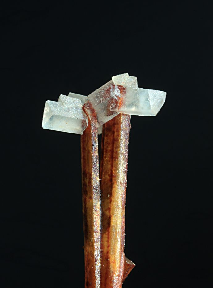 Anglesite on Cerussite - Monte Trisa Mines, Mercanti Valley, Vicenza Province, Italy  mw