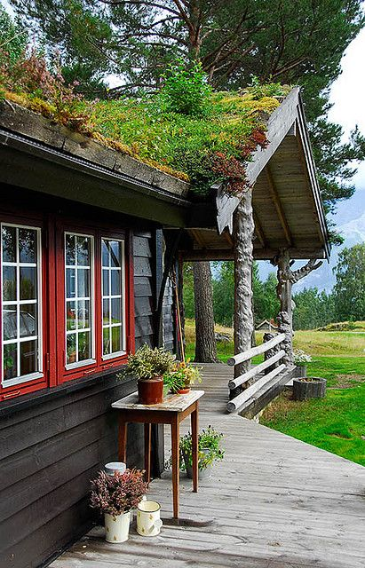 .swedish summer house