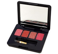 Estee Lauder - Pure Color Long Lasting Lipstick Palette 4 Colors
