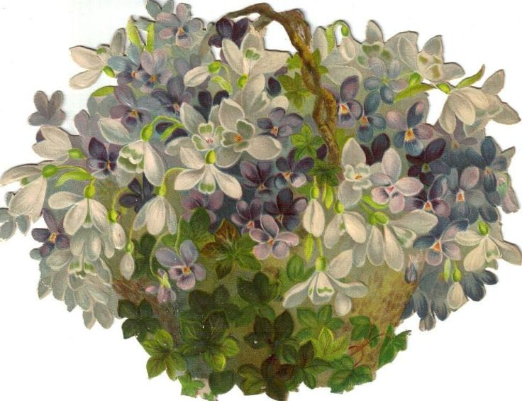 Larger Twig Basket of Violets & Snowdrops Victorian Die Cut Scrap c1880