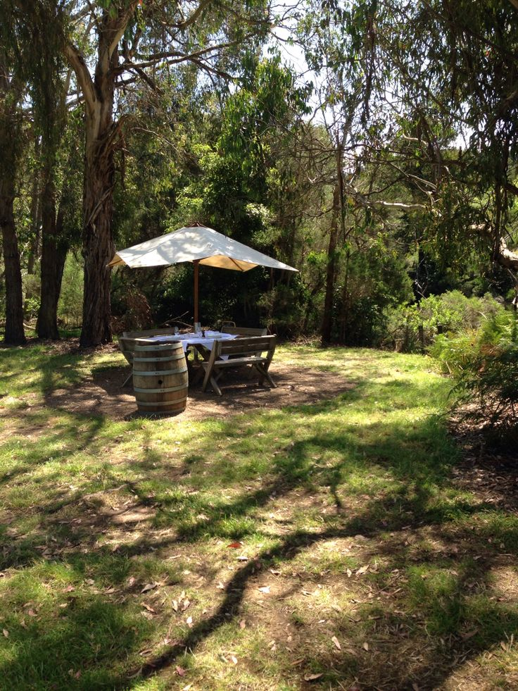 Montalto Vineyard and Olive Grove, Red Hill
