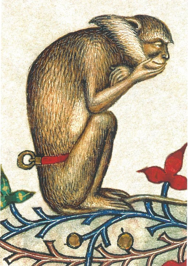 Breviary of Marie of Savoy, Milan, c. 1430, Bibliothèque Municipale, Chambéry, MS 4, Folio 319 (detail from the margin): A Capuchin Monkey