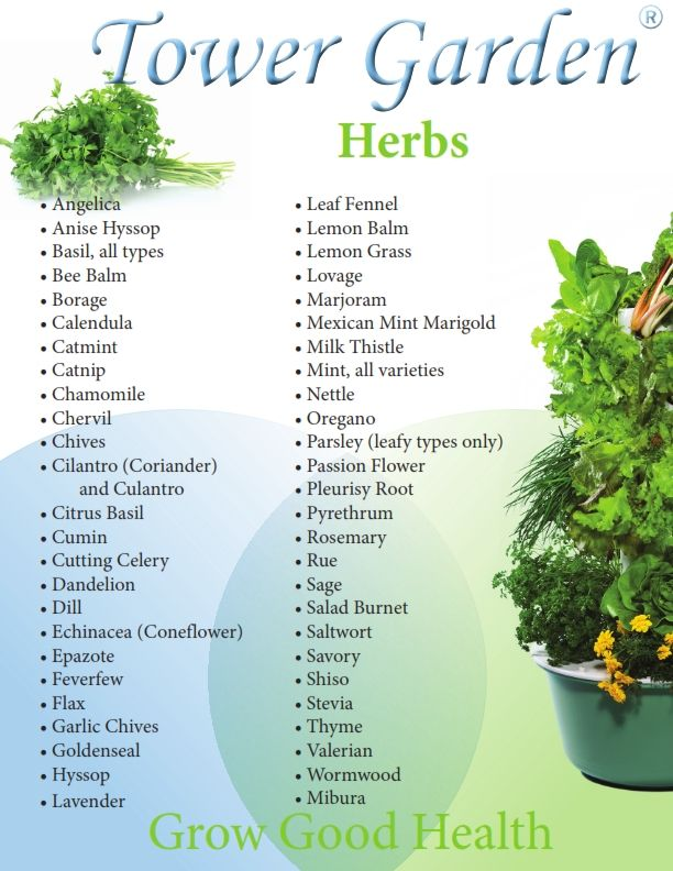 Check out the list of Herbs that you can grow in your Tower Garden!  What are you interested in growing?  Like, Share, Comment! We love to hear from you!