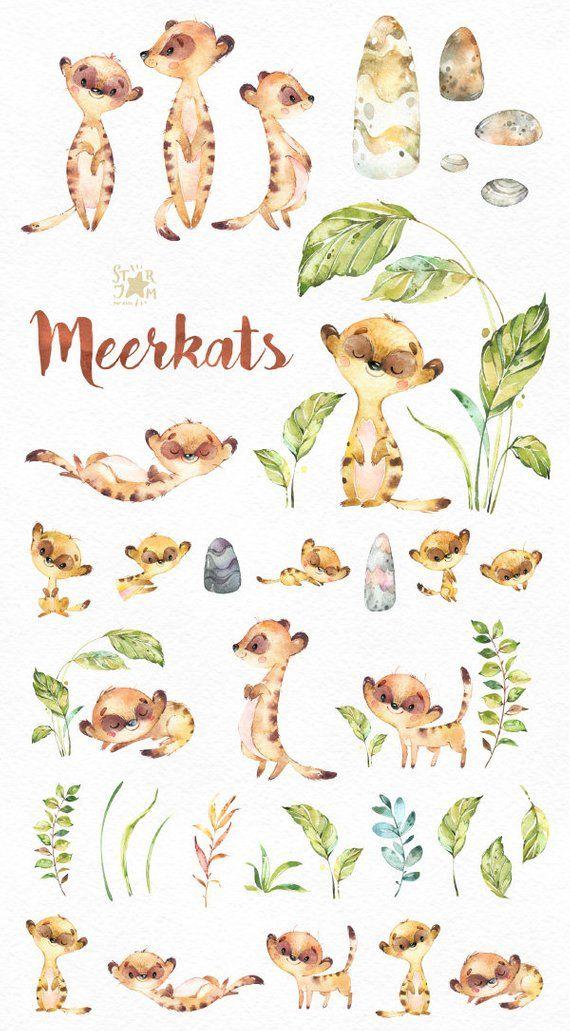 Erdmännchen. Aquarell Tiere Clipart, separate kleine Erdmännchen, Liebe, afrikanischen, Savanne, lädt, Steine, Blumen, Blätter, Babyshower, diy.