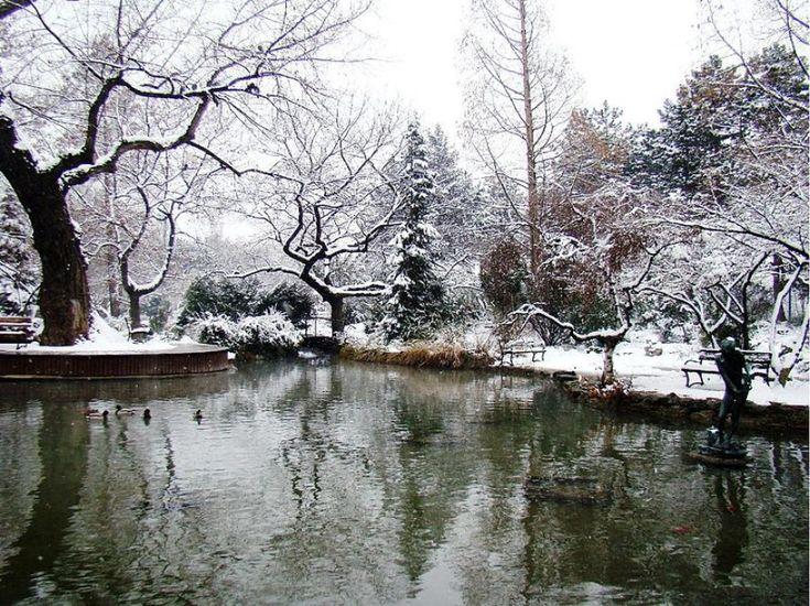 Angoli zen in città: i giardini giapponesi nel mondo