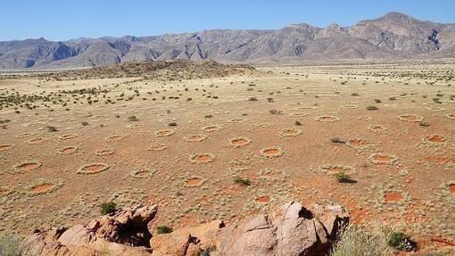 Las noticias científicas más impactantes de la semana                                                  Los misteriosos círculos de hadas de Namibia- Stephan Getzin/UFZSu origen ha sido hasta ahora un mis... http://sientemendoza.com/2017/01/20/las-noticias-cientificas-mas-impactantes-de-la-semana/