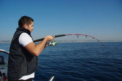 Découvrir le matériel Italcanna pour la pêche en mer