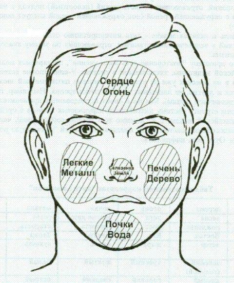 Китайская физиогномика - метод диагностики судьбы и состояния здоровья