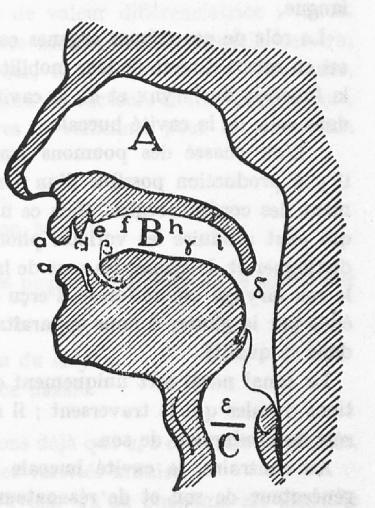 Le Lac Léman dans la cavité nasale