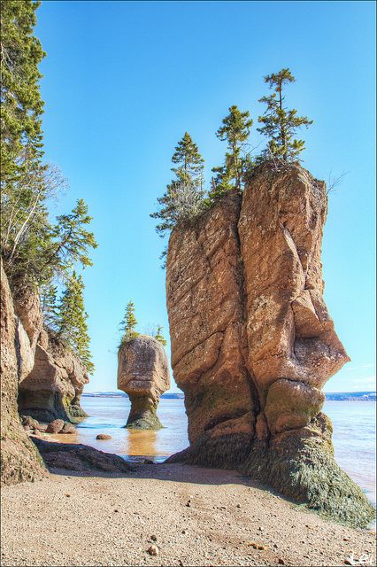 Hopewell Rocks Park - NB, Canada. Noteable for an amazing 50ft tidal ebb and flo