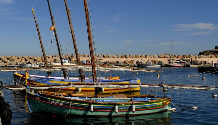 Barques catalanes dans le port de Banyuls-sur-mer. www.gites-de-france-66.com