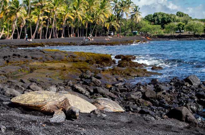 PUNALUU BLACK SAND BEACH  Where: Hawaii  Imagine a tropical beach where turquoise water laps up on the shore lined with coconut trees and palm fronds. Now imagine that beach with jet-black sand. That's Punaluu Beach on the southeastern Kau coast in Hawaii. The coastline of this unusual beach ...