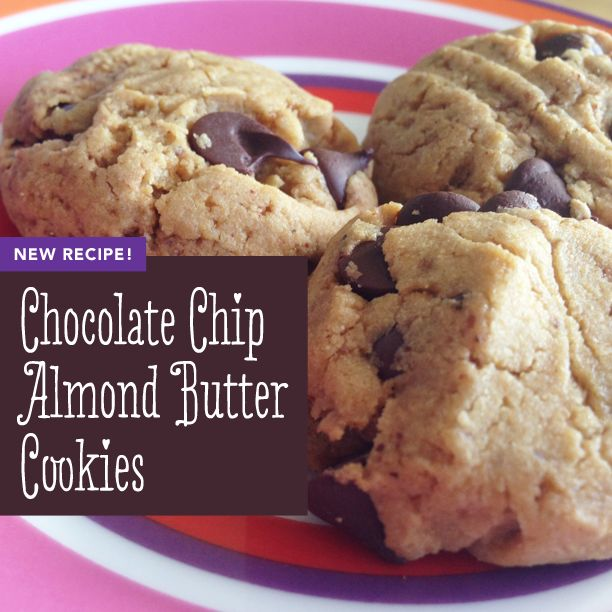 Gluten-Free Chocolate Chip Almond Butter Cookies | joyoushealth.com