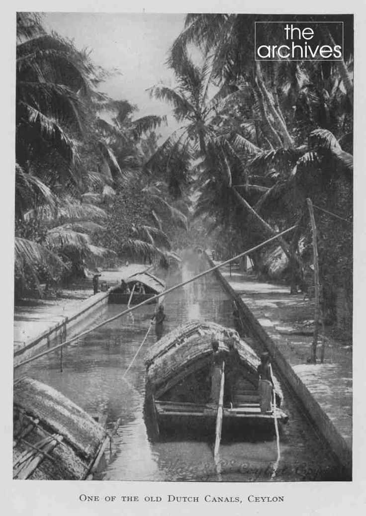 42 best Other Historical Imagery of Ceylon \ Sri Lanka images on - l k che mit kochinsel