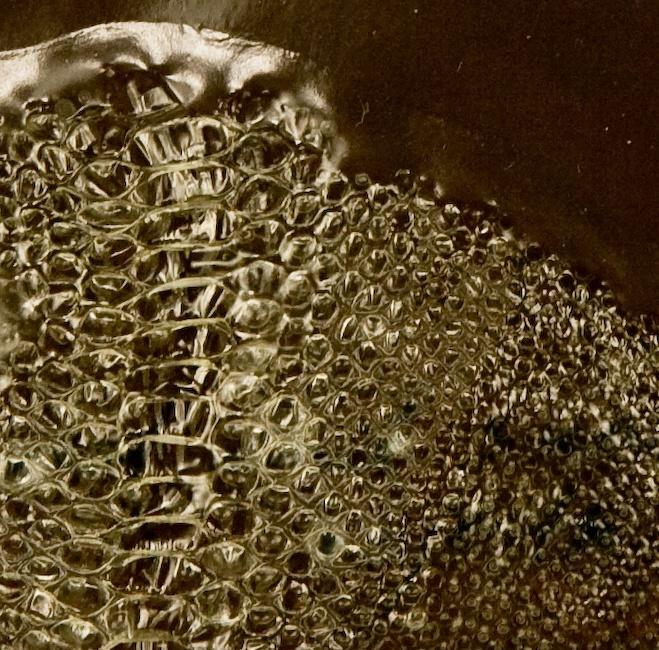 17 Best Snakes Images On Pinterest