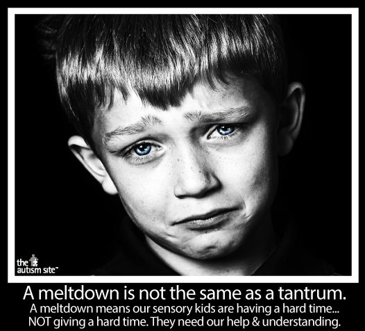 Learn more about the difference between a meltdown and a tantrum at The Autism Site.